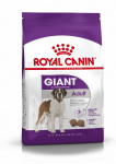 GIANT ADULT ROYAL CANIN